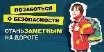 https://30karavan.edusite.ru/images/p33_10svetovozvrashaatel-.jpg